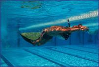 Otvoreno prvenstvo Srbije u brzinskom ronjenju i plivanju perajama - 21.06.2014,